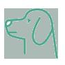 clinica veterinaria ostuni ecografia